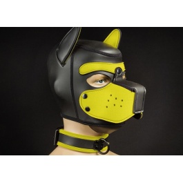 FETISH & BDSM, Mr. S Leather, Collar, Puppy play, Puppy collars, Puppy necklaces, Neoprene, Neoprene hoods and accessories, Coll