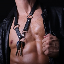 Harness, Dark Line, Leather, Leather accessories, Harness, Sport street, Leather, Accessories