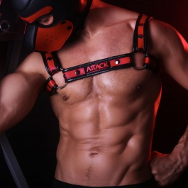 Neoprene harness