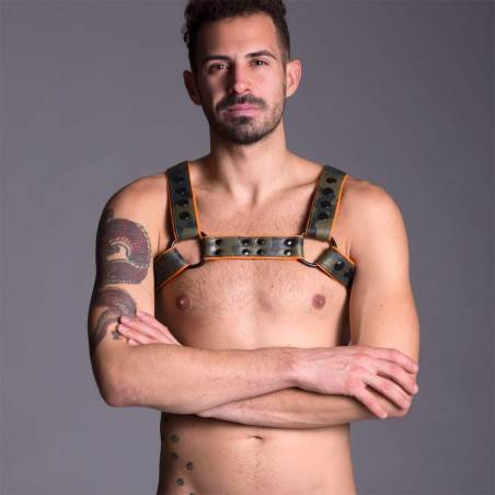 Clothing, Leather, Harness