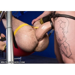 Anal Mr. S Leather